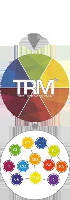 trm-consultek-group